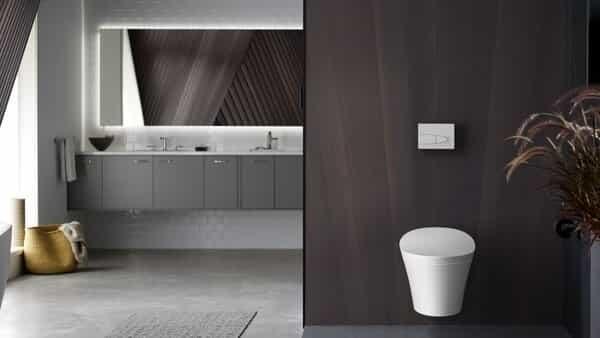 sarasota toilets designer bathroom